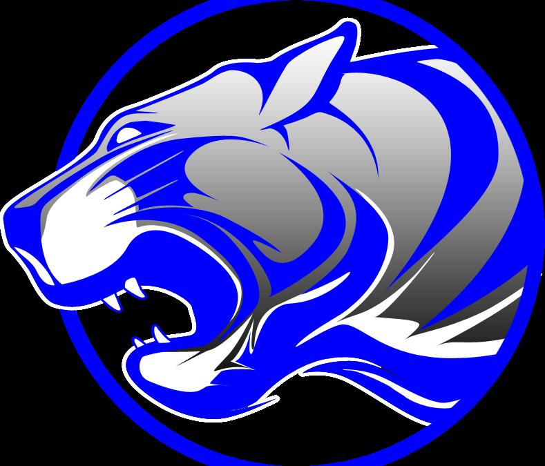 2021 Tiger Summer Sports Camps